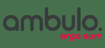 Ambulo - Guide touristique d'Art Contemporain du Pays Dignois